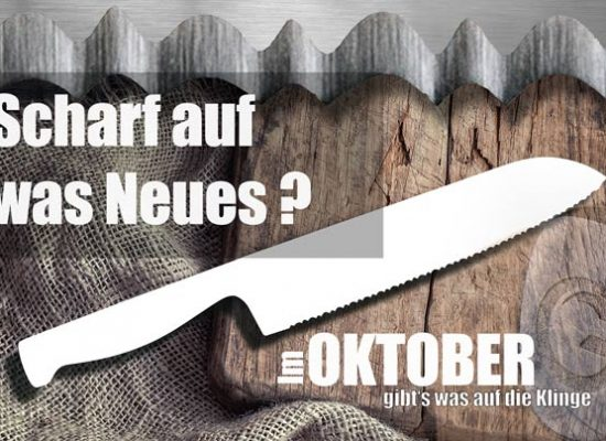 Nicer Dicer Messer auf Holz Teaser 550x400 - My front page